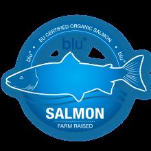 Salmon_blu_logo