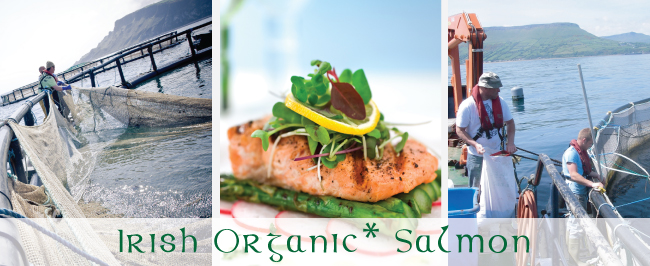 Irish_Organic_Salmon