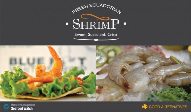 Ecuador_Shrimp_Good_Alternative2