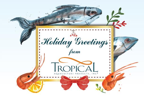 Tropical_Xmas_e-Card2015_top