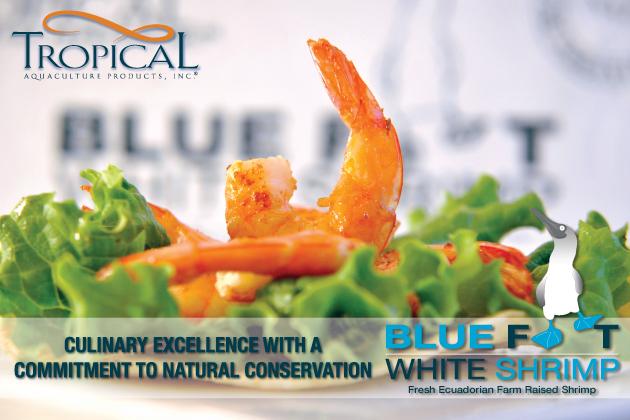 Blue_Foot_White_Shrimp