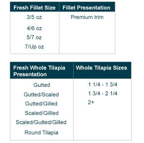 Tilapia_Presentation_Chart
